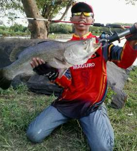 tahun yang lalu pakde Wayang Uwong sudah  Teknik mancing KAKAP PUTIH TLOCOR