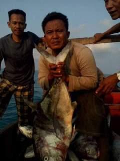 Siapa yang berani coba spot Lampung Timur MANCING POPPING DI SPOT BAGAN RUBUH